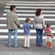 Family stand at the edge of pedestrian crossing road, parents keep childrens hands — Stock Video