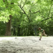 Boy runs closer across forest meadow all strewn fluff — Stock Video