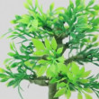 Artificial ornamental plant rotates counterclockwise — Stock Video