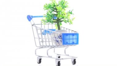 Artificial ornamental plant in flowerpot inside shopping trolley — Stock Video