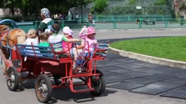 Children ride in red cart with one brown horse at park — Stock Video
