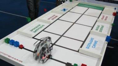 ロボットは色と形 robofest 2011 年によって並べ替えレンガです。 — ストックビデオ