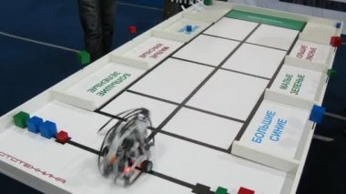 Robot is sorteren bakstenen door kleur en vorm op robofest-2011 — Stockvideo