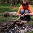 Stock Video: Little boy sit and drop matches to bonfire