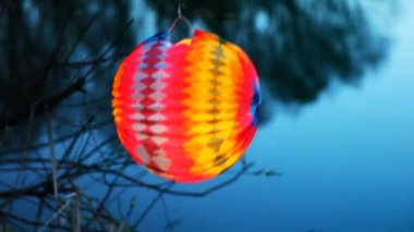 Paper ball hang on branch above lake — Stock Video