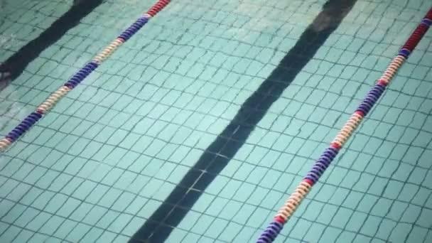 Surface d'eau ondulées de piste dans la piscine — Vidéo