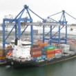 Cranes load ship in port — Video Stock #29832223