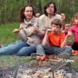 Father, mother and kids, sit on grass cover by plaid and eats kebab — Stock Video #29833207