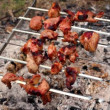 Skewers with kebab on embers — Stock Video