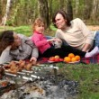 Family lay on grass covered by plaid, plates with fruit are near them — Stock Video #29834081