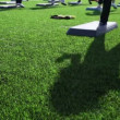 Shadow on grass of girl engaged in mass step aerobic exercise — 图库视频影像