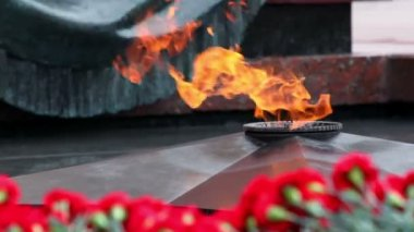Flowers lay near eternal fire on memorial grave of Unknown soldier of Second World War — Stock Video