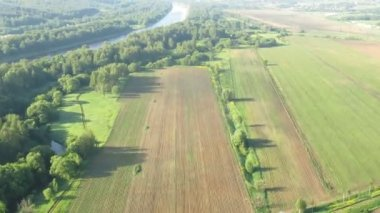 Flight above forest in aerostat, view from gondola — Stock Video