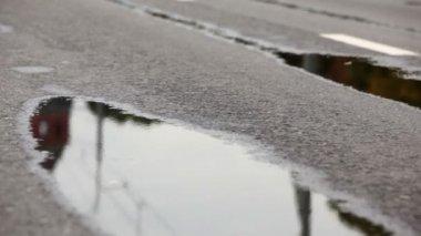Man legs run on wet asphalt one by one at XXX Moscow International Peace Marathon — Stock Video