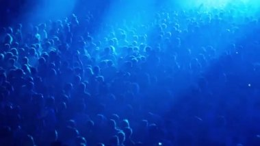 Crowd people at rave party with color light flashes — Stock Video