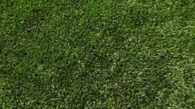 Green artificial grass of soccer field, part of gate for soccer with net — Stock Video