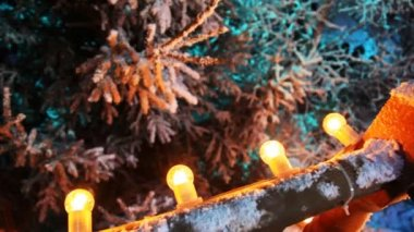 Number of festive bulbs illuminate winter forest — Stock Video