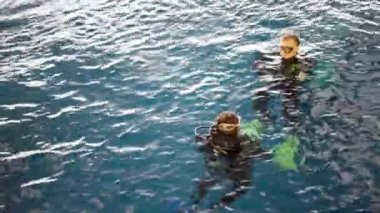 Divers float on water surface in swimming pool — Stock Video