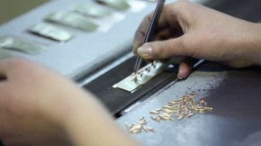 Female hand with tweezers put gold items on conveyer belt — Stock Video