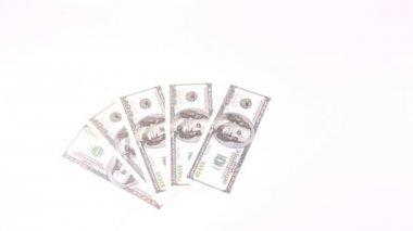 Cento banconote del dollaro appaiono e scompaiono come fan — Video Stock