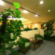 Stock Video: Two armchairs with table among plants on top level of multiple floor building
