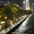Cars and people go along on embankment of Pearl river at night — Stock Video
