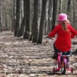 Sister and brother go away on bicycles at park — Stock Video