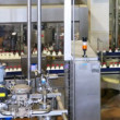 Milk bottles in conveyor belts move and behind automation stamped date of manufacture — Stock Video