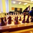 Chess starting position on board closeup — Vídeo Stock