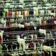 Stock Video: One customer walk among clothes in shop department
