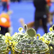 Few prize cups at unfocused background with people and their dogs at contest — Stock Video