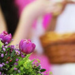 Stock Video: Bouquet flowers in back and defocus girl holding basket of twigs