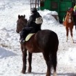 Boy sits horseback, woman help his sister to climb on horse — Stock Video #30659031