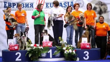 Several women stand on pedestal with their dogs at International Dog Show Eurasia 2011 — Stock Video