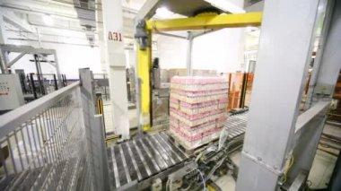 Robô de paletização envolvimentos com filme stretch de garrafas de iogurte em paletes — Vídeo stock