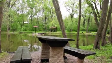 Table and benches ashore of small pond at summer — Stock Video