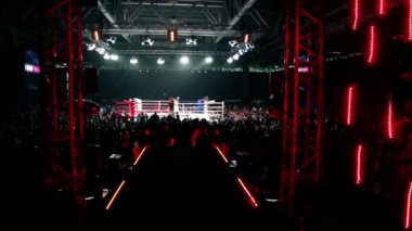 Crowd in large hall on fighting event — Stock Video