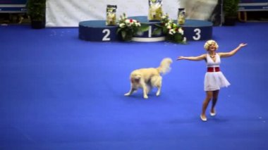 Woman dance with her dog of atlas shepherd breed at International Dog Show Eurasia 2011 — Stock Video