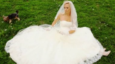 Blonde in wedding dress sits on lawn and plays floret with doggie — Stock Video