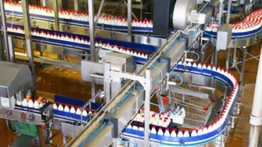 Bottles of milk move long conveyor first in one, then many ranks at factory — Stock Video