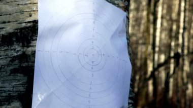 Bullet hit paper shooting aim on birch stem — Stock Video