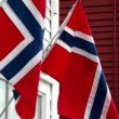Stock Video: Wall of building with two flags of Norway which flutter in wind