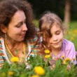 Mother and daughter lie on green glade with yellow dandelions — Vídeo Stock
