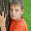 Little boy stands and embraces tree, closeup view at summer day — Stock Video