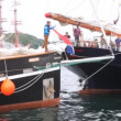 Sailingship moors to pier near other ships in port of Stavanger — Stock Video