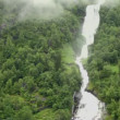 Stock Video: Waterfall and river among forest on mountain at shore of fiord