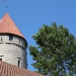 Tower with red roof tiled and tree nearby against sky — Stock Video