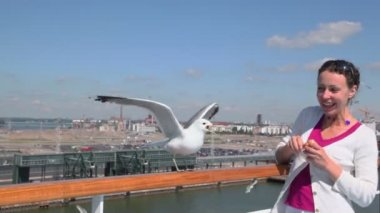 Gull sits on handrail and woman feeds it at summer day in port — Stock Video