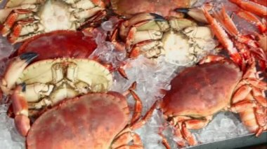 Many crabmeat and prawns lies in ice, shown in motion — Vidéo