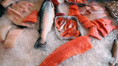Red fish and other seafoods lay in ice, closeup view in motion — Stock Video